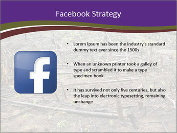 Slash and burn cultivation PowerPoint Template - Slide 6