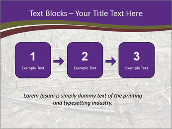 Slash and burn cultivation PowerPoint Templates - Slide 71