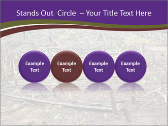 Slash and burn cultivation PowerPoint Template - Slide 76