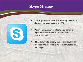 Slash and burn cultivation PowerPoint Templates - Slide 8