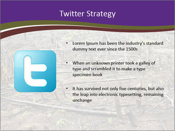 Slash and burn cultivation PowerPoint Template - Slide 9
