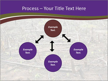 Slash and burn cultivation PowerPoint Templates - Slide 91