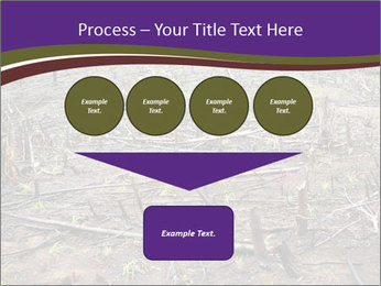 Slash and burn cultivation PowerPoint Templates - Slide 93