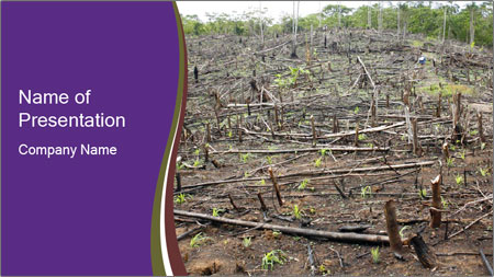 Slash and burn cultivation PowerPoint Template