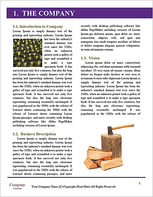 0000092894 Word Template - Page 3