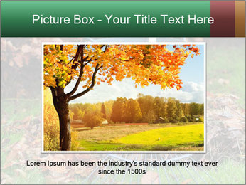 Autumn leaves PowerPoint Templates - Slide 16