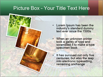 Autumn leaves PowerPoint Templates - Slide 17