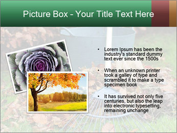 Autumn leaves PowerPoint Templates - Slide 20