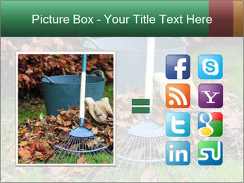 Autumn leaves PowerPoint Templates - Slide 21