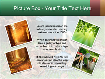 Autumn leaves PowerPoint Templates - Slide 24
