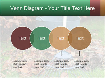 Autumn leaves PowerPoint Templates - Slide 32