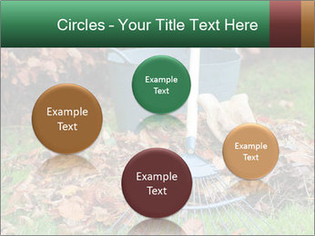 Autumn leaves PowerPoint Templates - Slide 77