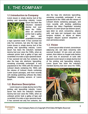 0000092895 Word Template - Page 3