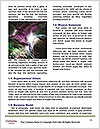 0000092897 Word Templates - Page 4