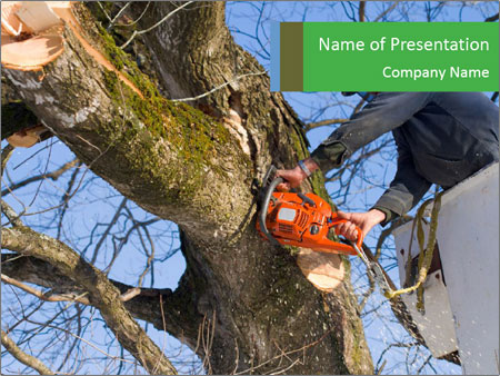 A tree surgeon cuts PowerPoint Templates