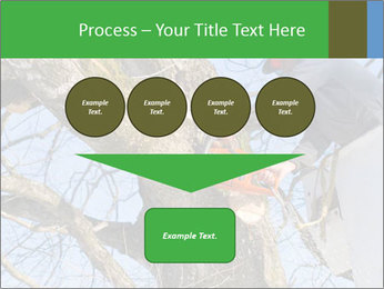A tree surgeon cuts PowerPoint Templates - Slide 93