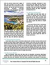 0000092907 Word Templates - Page 4