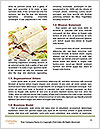 0000092909 Word Templates - Page 4