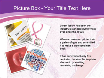 Microscope picture PowerPoint Template - Slide 23