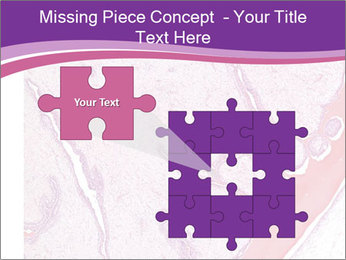 Microscope picture PowerPoint Template - Slide 45