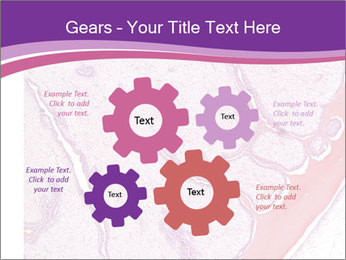 Microscope picture PowerPoint Template - Slide 47