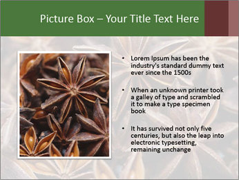 Star anise PowerPoint Templates - Slide 13