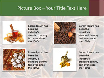 Star anise PowerPoint Templates - Slide 14