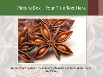 Star anise PowerPoint Templates - Slide 15