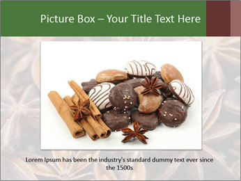 Star anise PowerPoint Templates - Slide 16