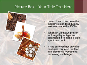 Star anise PowerPoint Templates - Slide 17