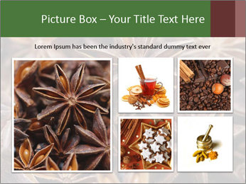 Star anise PowerPoint Templates - Slide 19