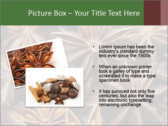 Star anise PowerPoint Templates - Slide 20