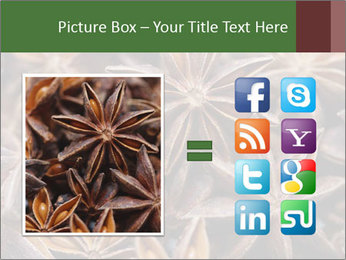 Star anise PowerPoint Templates - Slide 21