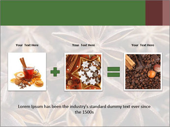 Star anise PowerPoint Templates - Slide 22