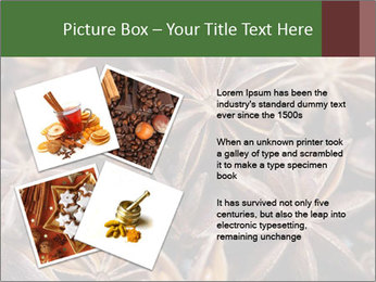 Star anise PowerPoint Templates - Slide 23
