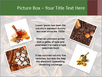 Star anise PowerPoint Templates - Slide 24
