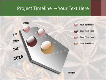 Star anise PowerPoint Templates - Slide 26