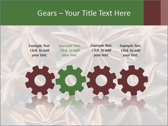 Star anise PowerPoint Templates - Slide 48