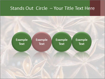 Star anise PowerPoint Templates - Slide 76
