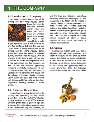 0000092920 Word Template - Page 3