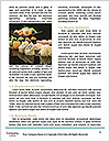 0000092923 Word Template - Page 4