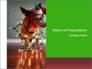 Santa's little helper PowerPoint Templates