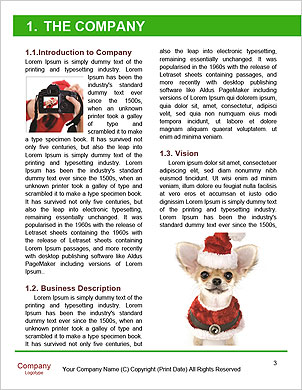 0000092928 Word Template - Page 3
