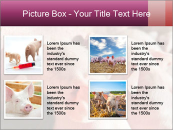 Momma pig feeding PowerPoint Templates - Slide 14