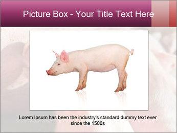 Momma pig feeding PowerPoint Templates - Slide 15