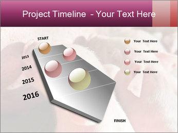 Momma pig feeding PowerPoint Templates - Slide 26