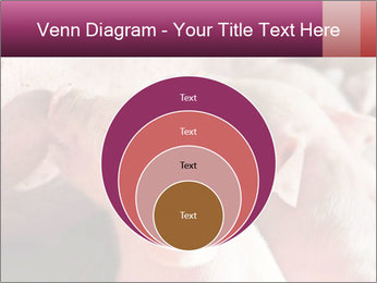 Momma pig feeding PowerPoint Templates - Slide 34