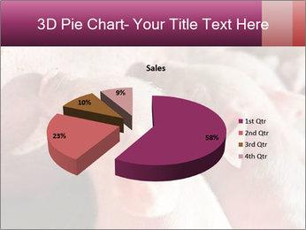 Momma pig feeding PowerPoint Templates - Slide 35