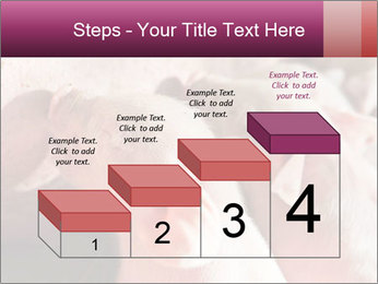 Momma pig feeding PowerPoint Templates - Slide 64