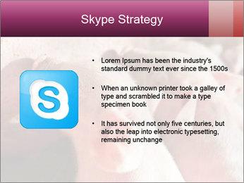 Momma pig feeding PowerPoint Templates - Slide 8